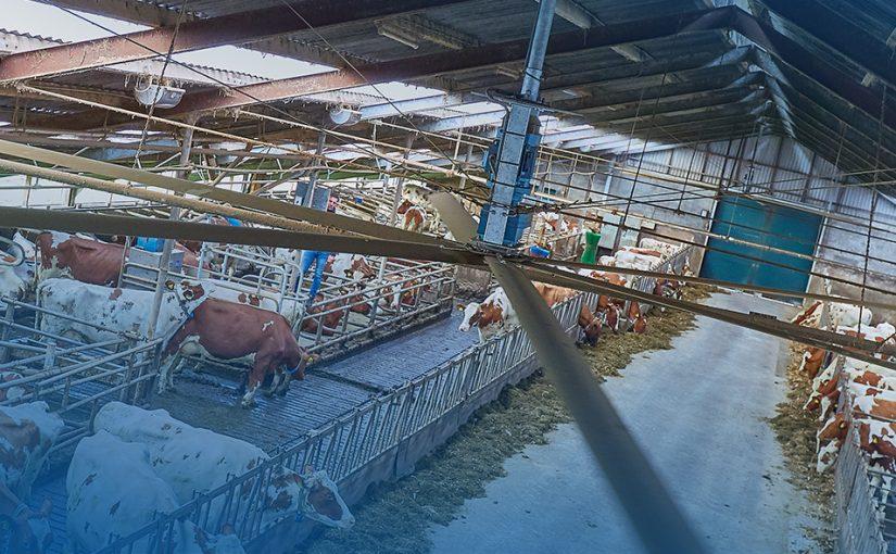 """""""Zoals we hier in Twente zeggen; de koeien waren beter te pas!"""""""